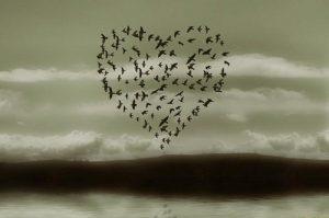 Amare o essere amati?  (Parte Seconda)
