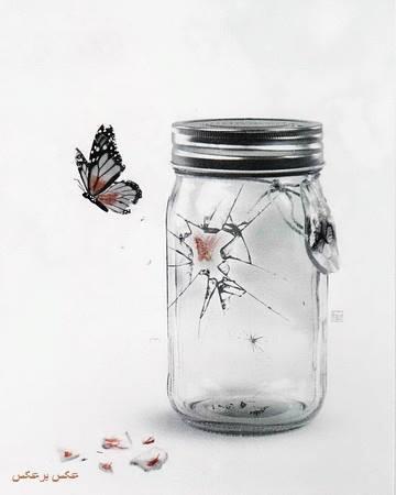 farfalla buca barattolo_ Nuova Umanità