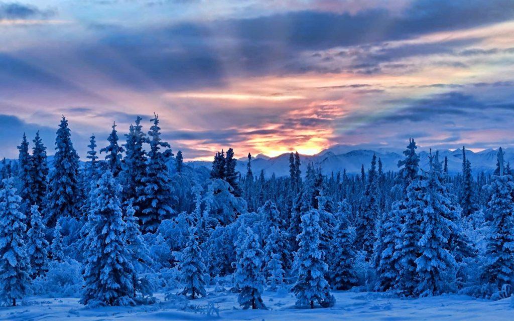 Solstizio d'Inverno - L'autentico valore del Natale