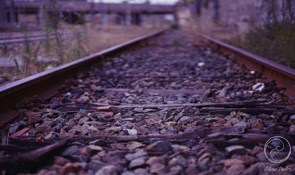 Vecchie strade - Fotografia - Silvia Pedri