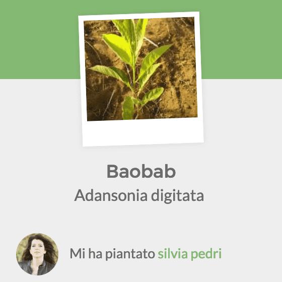 Treedom - Iniziativa sostenuta da Silvia Pedri