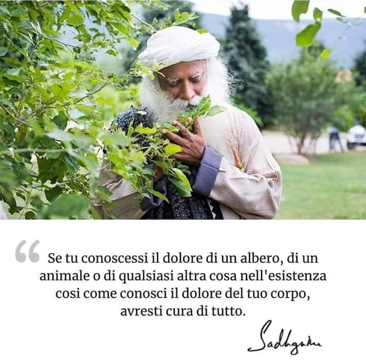 Empatia esseri viventi - Silvia Pedri