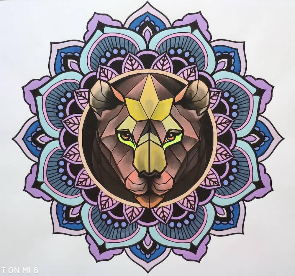 Mandala Orso Silvia Pedri