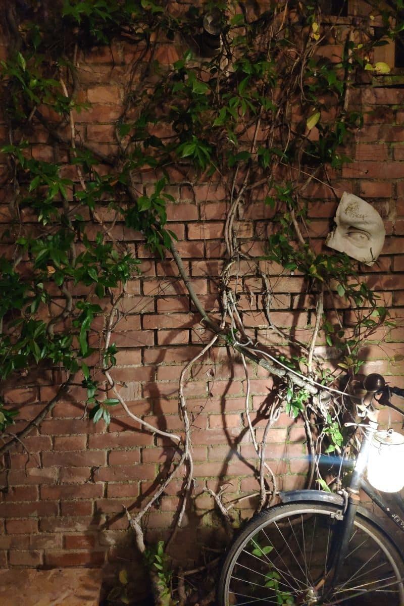 bicicletta apoggiata ad un muro - il libro della forza